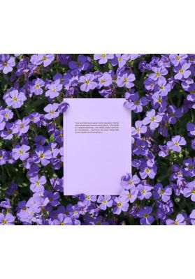 PANGAIA |Tree free notebook |orchid purple